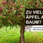 Apfel_ohne